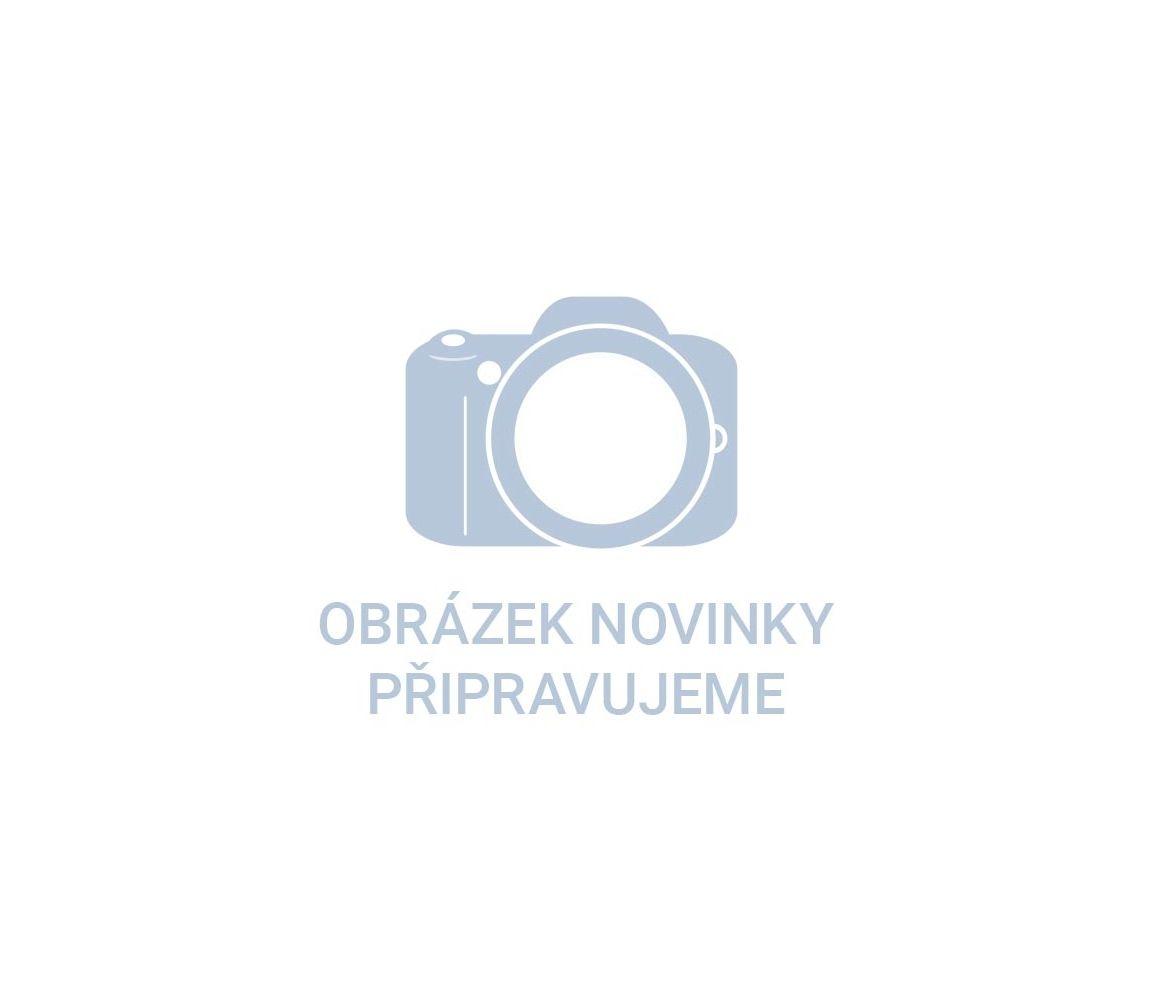 """utahovák rázový aku HEX 1/4"""", 16,6V Li-ion, bez baterie a nabíječky"""